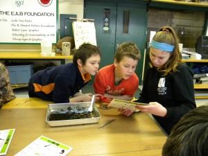 A Wethead helping students identify invertebrates.